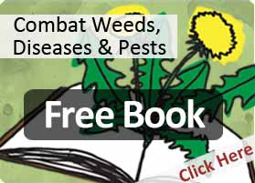 Lawn weeds diseases and pests - free ebook download