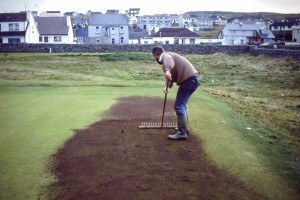 Working the top dressing into the sward