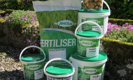 The best Lawn fertilizers for Autumn and Winter.