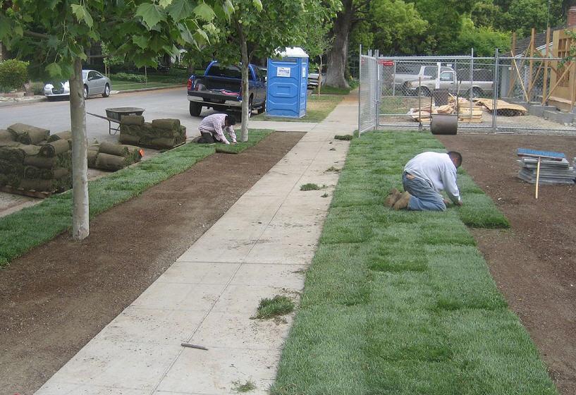 Lawn construction and establishment: Building a new grass area