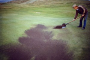 Spreading topdressing with a shovel.