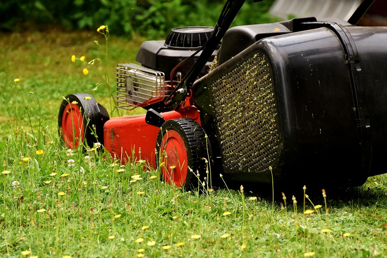Cobra 18″ Petrol Rear Roller Lawn Mower RM46SPB Review