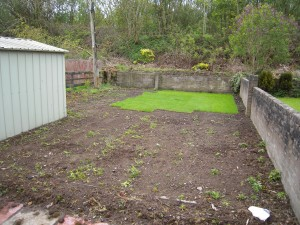 Turfing a new lawn