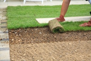 Artificial Grass Versus Laying a Sod / Turf Lawn