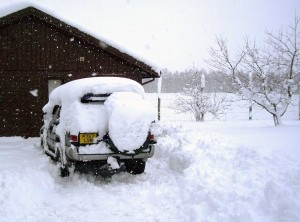 Lawn Care in Winter - a tricky prospect
